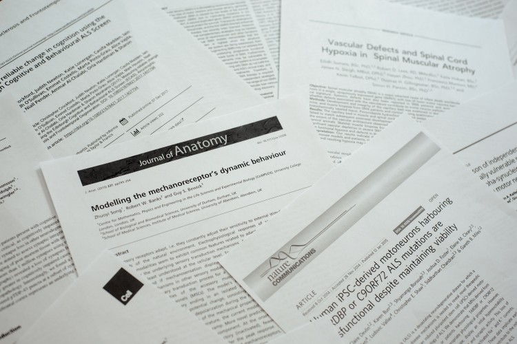 Image of research papers