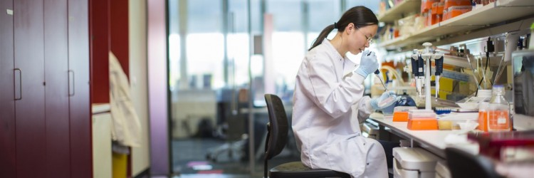 a  female researcher working in a lab